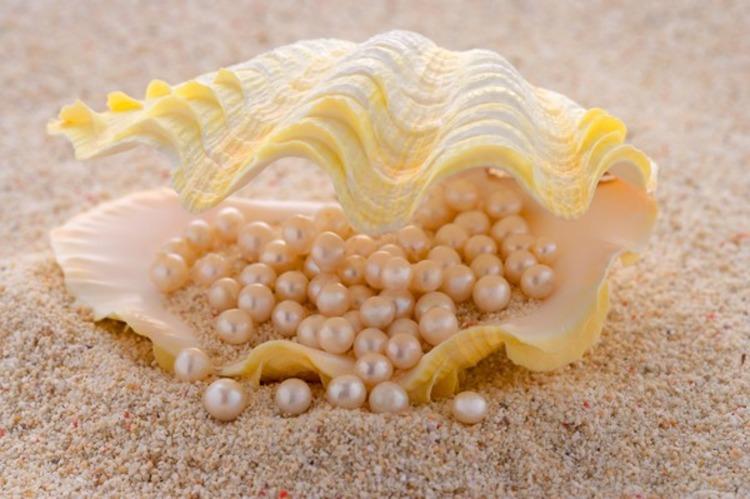 Бьюти-комплекс из жемчужного порошка: секрет перламутровой кожи